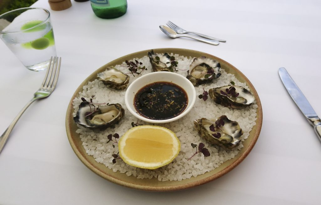 oysters at Graze MCA